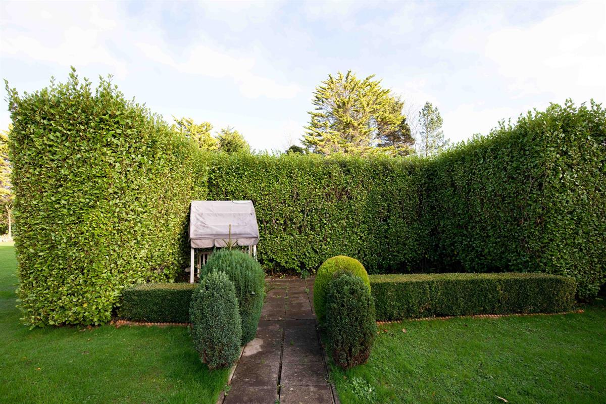 Annex garden