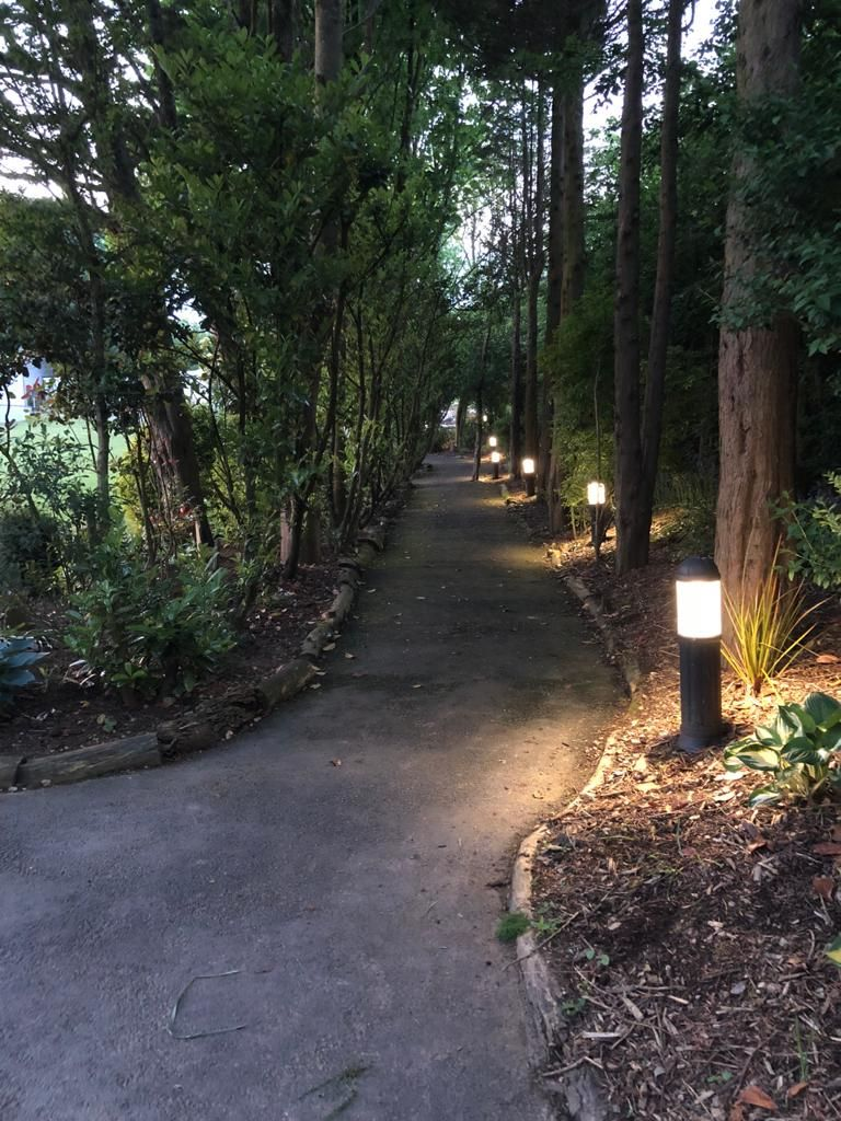 Woodland walkway leads down to the cabin